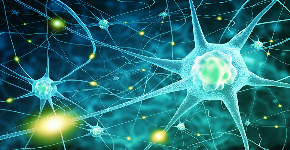 Symptomatic treatment in multiple sclerosis