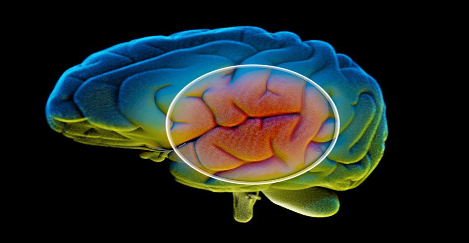 A non-invasive biological marker for Parkinson's disease?