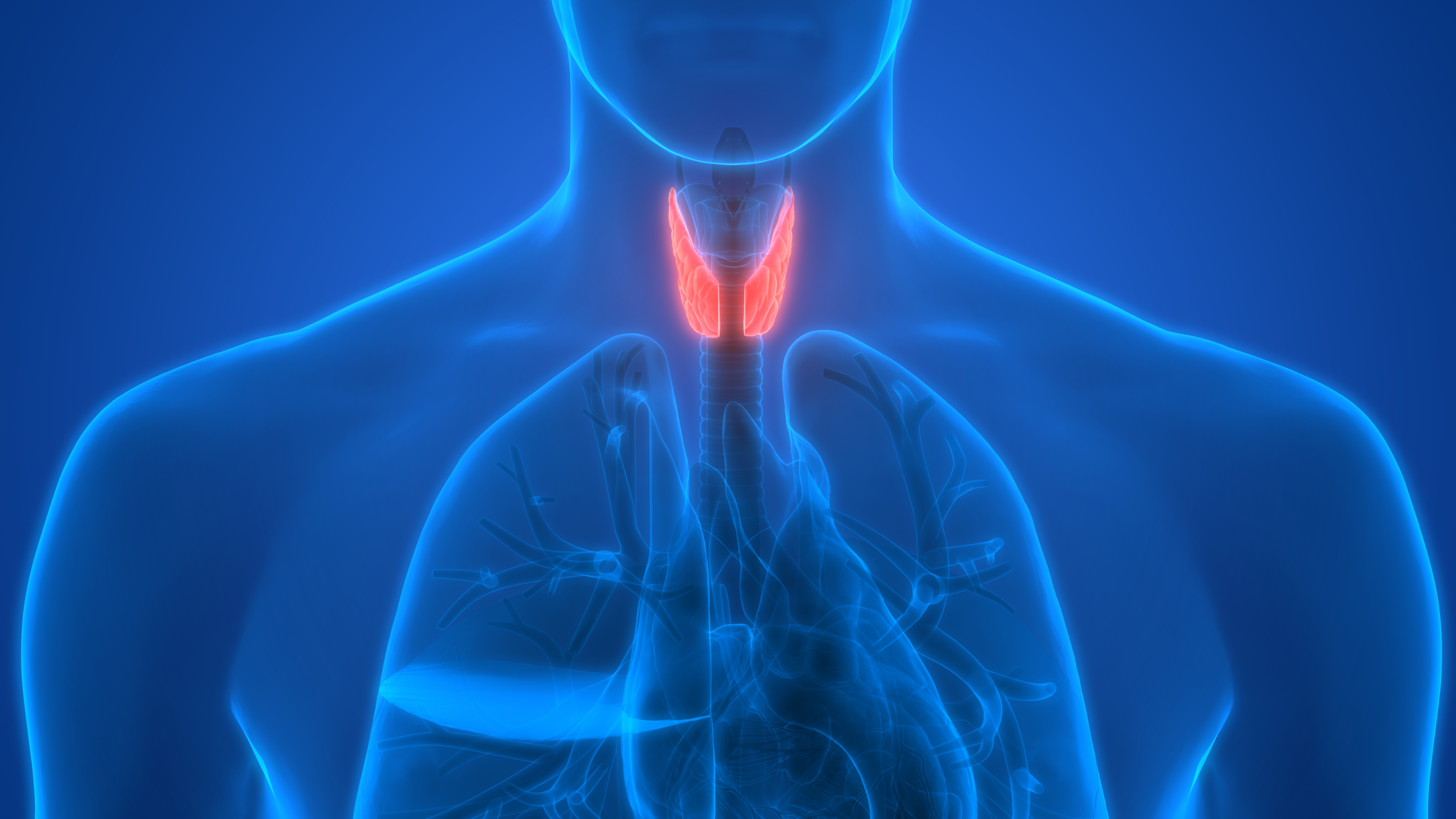 Phase II study shows objective response rate in thyroid cancer