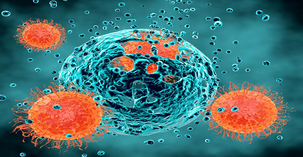MSD announces presentation of data on investigational use of pembrolizumab in advanced bladder cancer