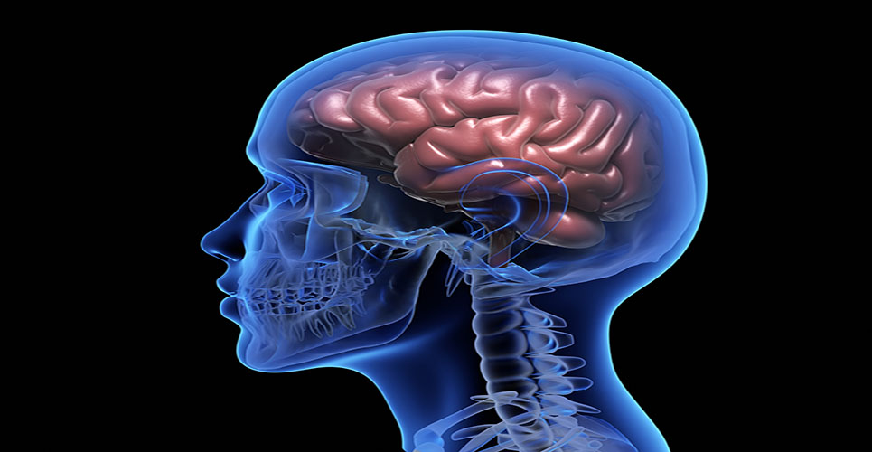 Positive results of Phase III study of once-daily therapy in newly diagnosed focal epilepsy patients