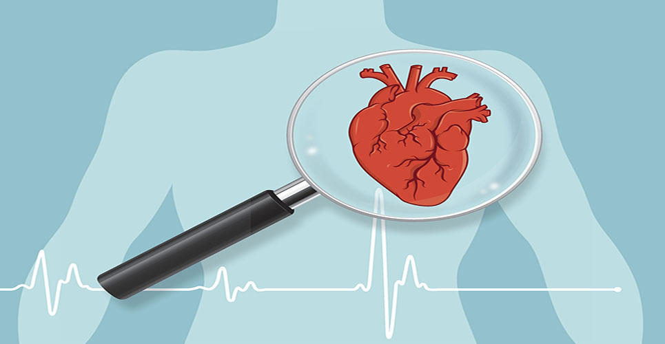 Patient immune response could potentially prevent heart failure