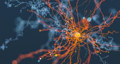 neurology_411x220px.jpg
