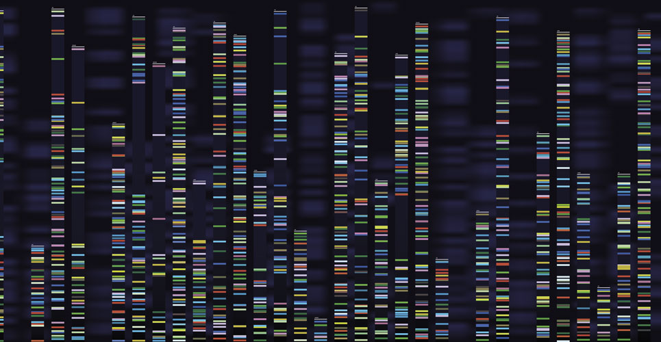 An introduction to pharmacogenomics