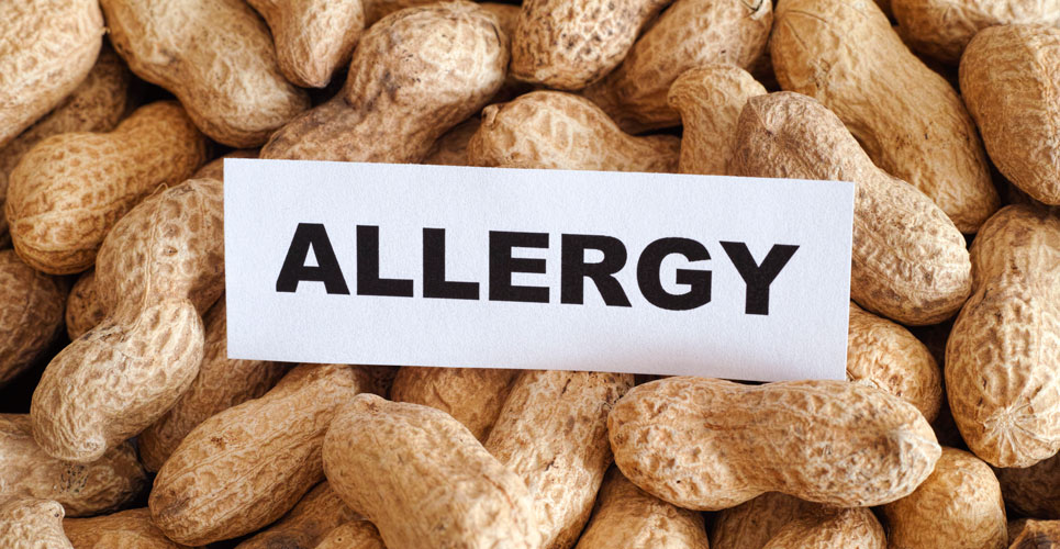 Potential treatment for peanut allergy protects but does not cure