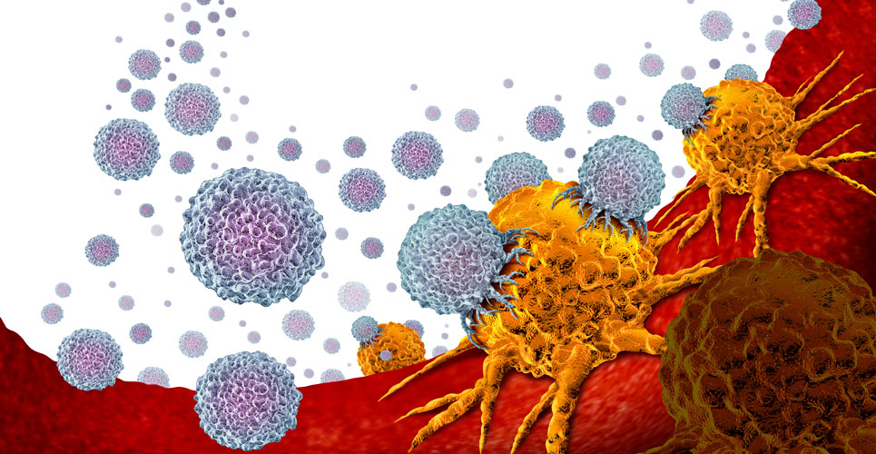 Prostate cancer 'super responders' benefit from immunotherapy