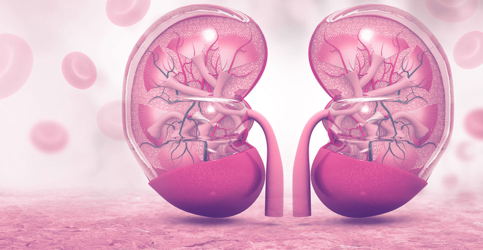 Avelumab combination approved as first-line therapy in advanced RCC