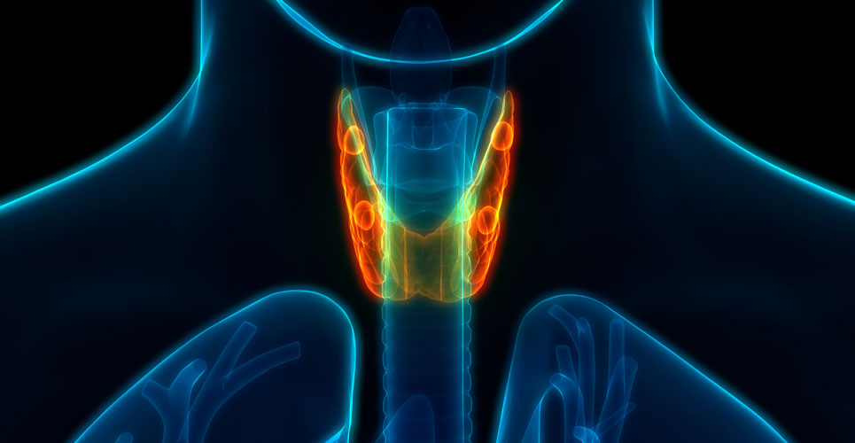 New guidelines will improve treatment for patients with hyperthyroidism