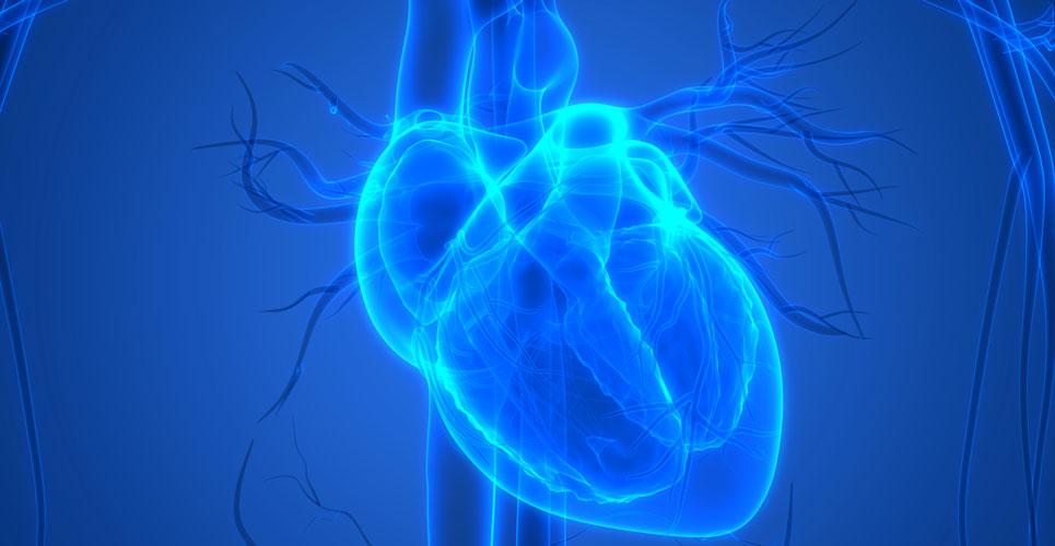 Acute myocardial injury: COVID rapid guideline summary