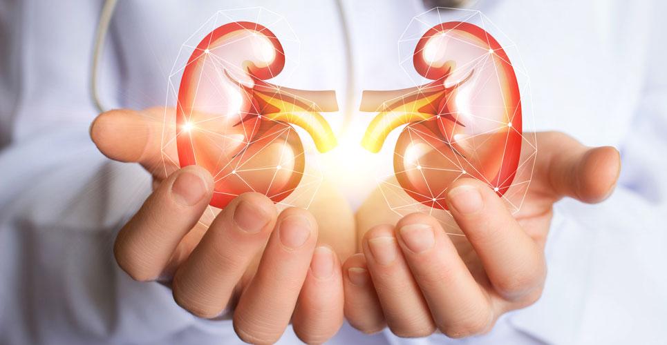 Renal transplantation: NICE COVID-19 rapid guideline summary