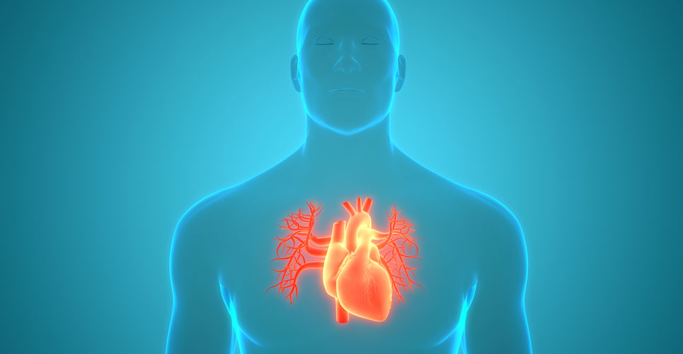 Study shows atrial fibrillation successfully detected in older patients via a wearable device