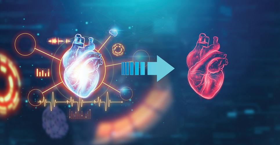 Adaptation after heart transplantation: A framework for the future
