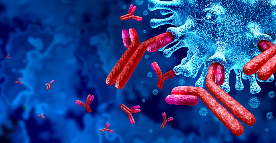 Low risk of COVID re-infection in young seropositive adults