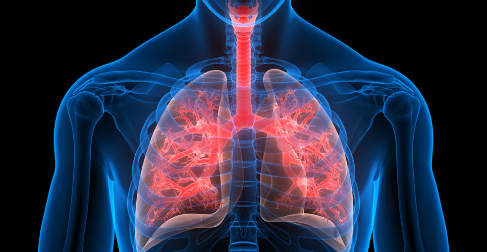 Doxycycline and anti-tuberculosis therapy reduces markers of lung damage