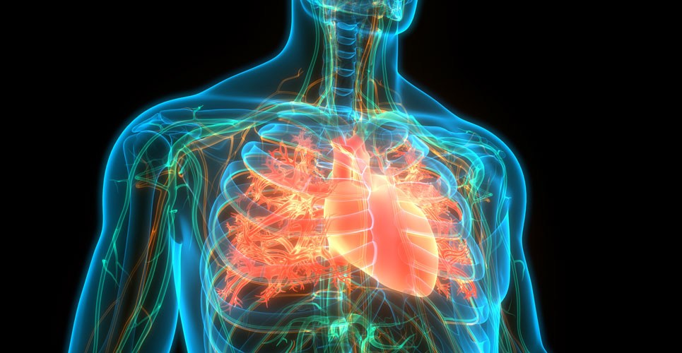 Study shows heart failure associated with increased incidence of cancer