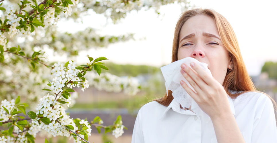 dupilumab and allergic rhinitis